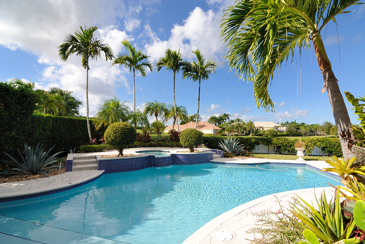 A residential pool surrounded by palm trees in a gated neighborhood in Florida.